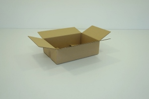 20x15x06 simple cannelure     1600 cartons a 0.22 €