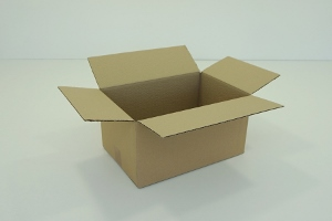31x22x15 simple cannelure     480 cartons a 0.55 €