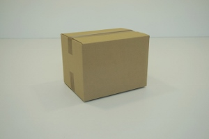 20x15x15 simple cannelure     1080 cartons a 0.28 €
