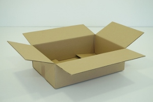 25x25x19 simple cannelure     1200 cartons a 0.32 €